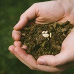 【因果の法則】成功する人はロングテールに種を蒔いている?